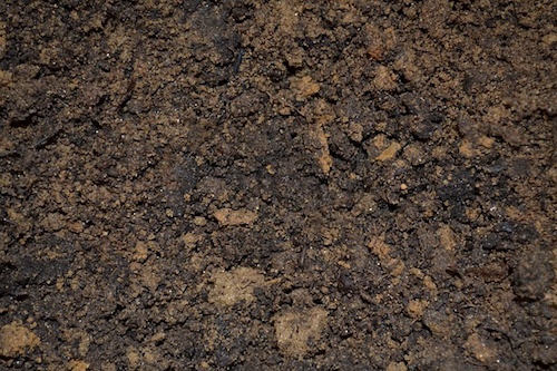 compact-soil