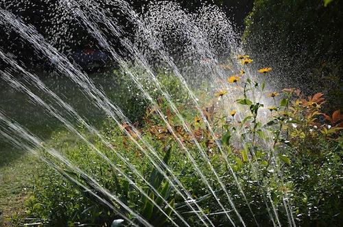 lawn-sprinkler-foundation
