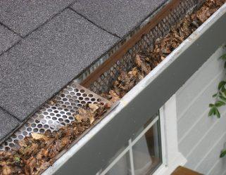 clean-gutter-maintenance