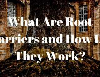 Root-Barriers-How-They-Work