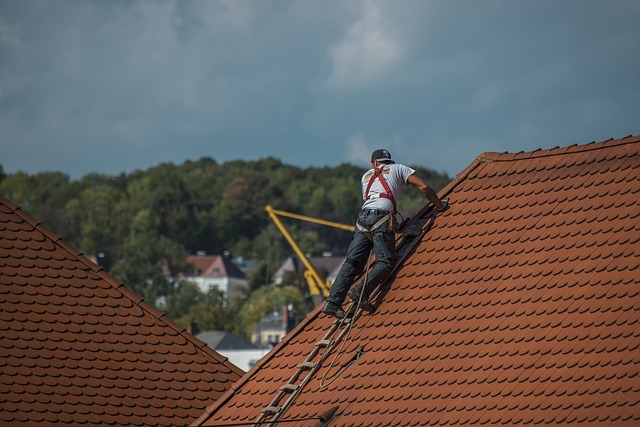 roof-inspecting