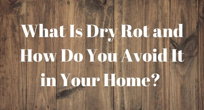 Avoiding-Dry-Rot-In-Your-Home-GraniteFoundation