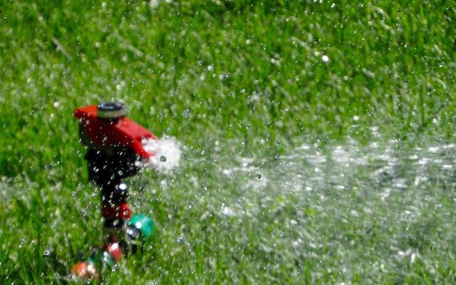 sprinkler-water-grass-wet