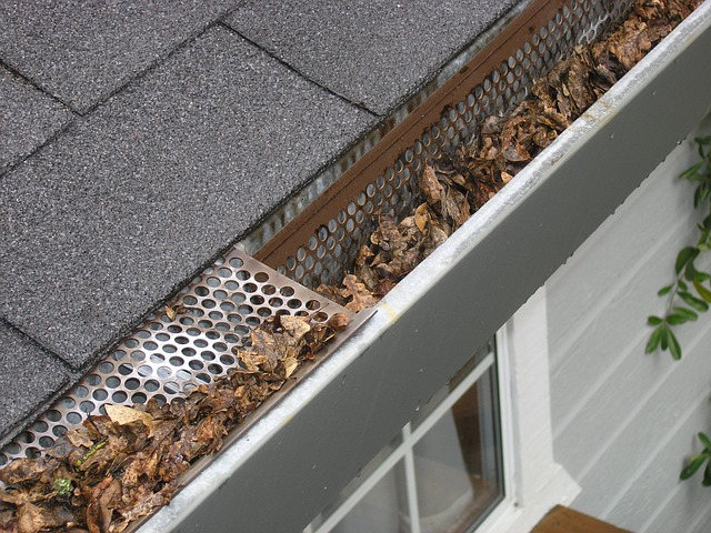 house gutter cleaning texas