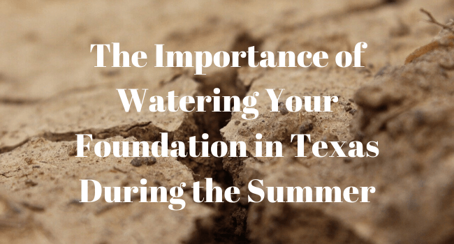 watering your texas foundation